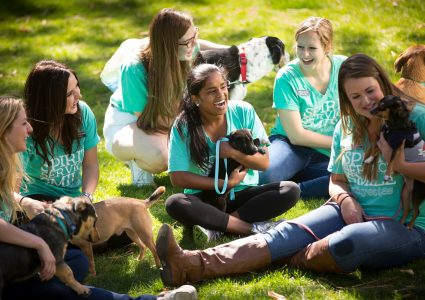 students wearing matching shirts play with puppies on a sunny lawn
