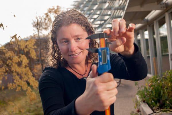NAU conservation biologist Clare Aslan studies land management.