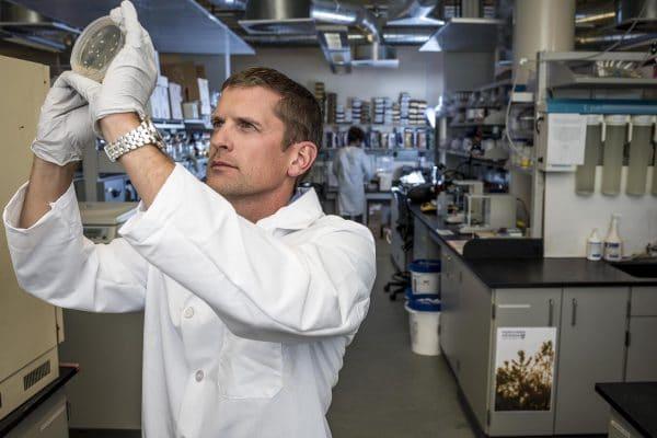 NAU microbiologist Jason Sahl studies pathogen genomics.