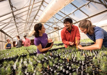 nau students in greenhouse studying plants