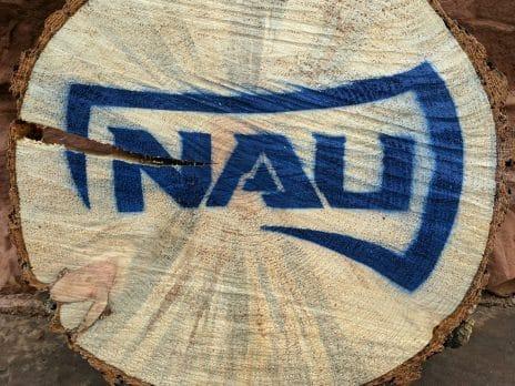 nau logo in blue on a slice of tree trunk