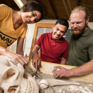 Students examine a skeleton at the NAU Forensics Lab