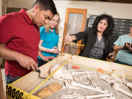 students gather around box and examine skeletal remains