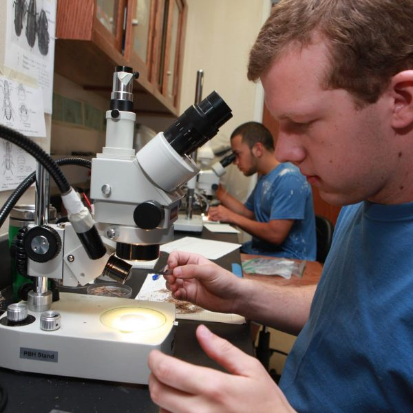 two students examine samples under microscope