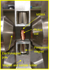 magnetic shape memory alloys