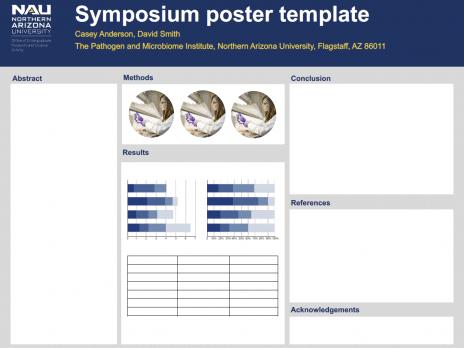 Poster Presentation Information Undergraduate Research