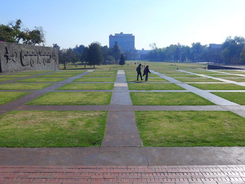 A view of a walkway through a grass field