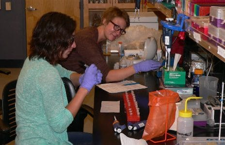 Researchers working in the Schwartz lab at NAU