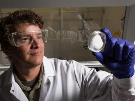 Dr. Nieto working in the lab at nau in flagstaff