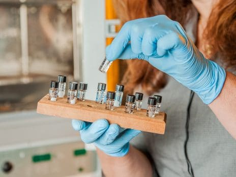 vials being held by student in a lab at nau