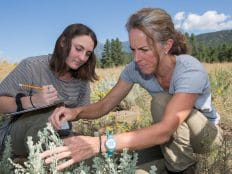 Dr. Haubensak and student doing field work