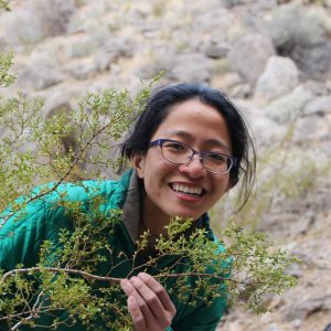 student and creosote bush