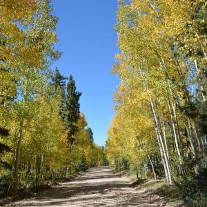 landscape conservation initiative at nau