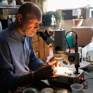 Stephen Shuster working in his lab