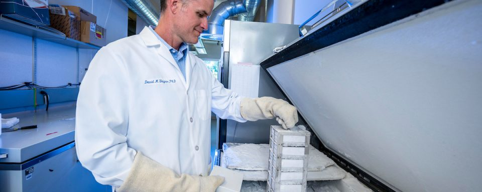 Dave Wagner pulling samples out of the freezer.