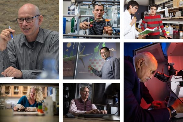 Collage of Scott Goetz, Björn Krondorfer, Yiqi Luo, Michelle Mack, Ted Schuur, Miguel José Yacamán